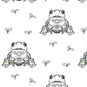 frog and flies