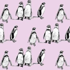 penguins pink