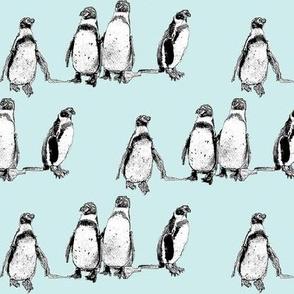 penguins pale blue