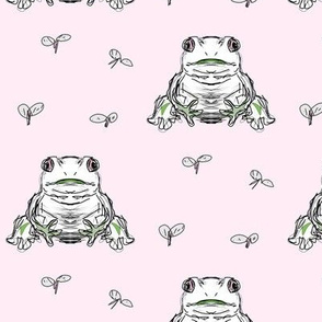 frog and flies pink