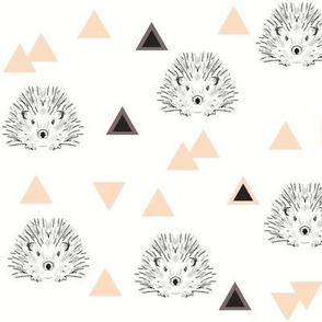 hedgehogs coral