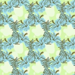 Pinapple X Ibisco