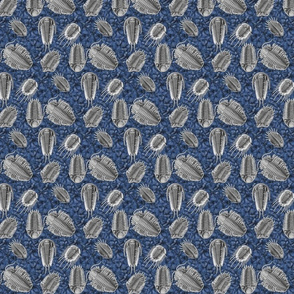 trilobites blue