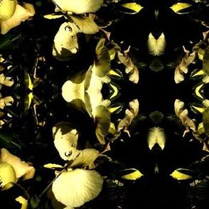 Mirrored Petals