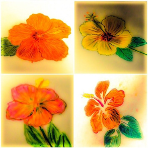 Hand Drawn Hibiscus set of 4