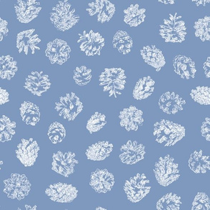 pine cones on frosty blue