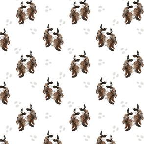 Brown Bunnies 3