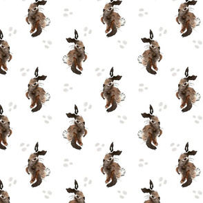 Brown Bunnies 2