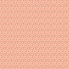 Dots warmed up