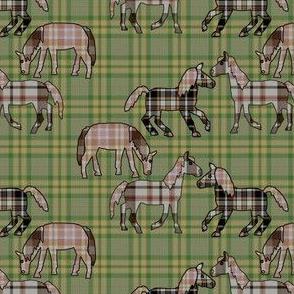 Plaid Ponies
