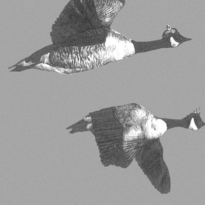 flying_geese_snowstorm_gray