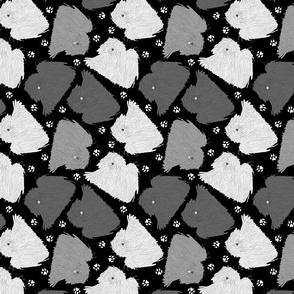 Trotting Pulik and paw prints - black