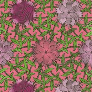 Dianthus flower on woodgrain