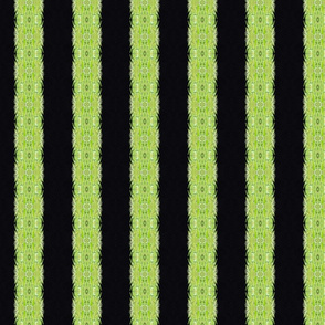 Vertical Green and Black Stripes