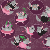chinchilla_ballet_mauve