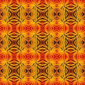 Desert_Star_fresco_edited-1-ed