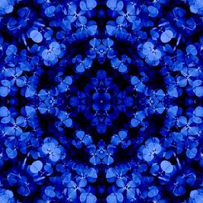 Celtic Clover Knot: Sapphire