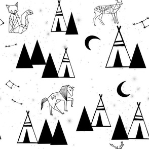 black and white // constellations forest southwest tipi