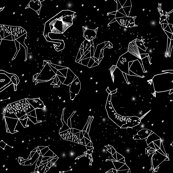 Rrgeo_constellations_fixed_black_shop_thumb
