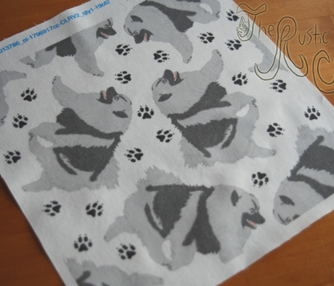 Trotting Keeshond and paw prints - white