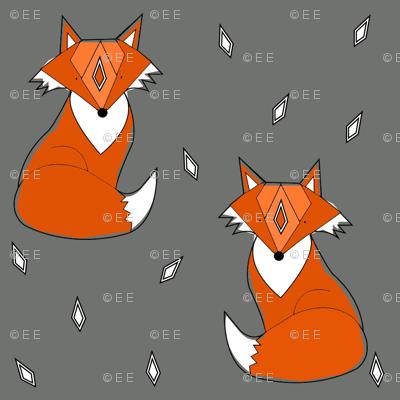 grey fox - elvelyckan