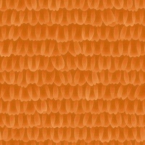 Monarch butterfly scales