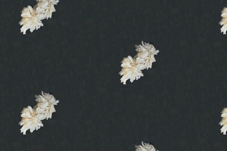 peony in grey fabric by poppygolightly on Spoonflower - custom fabric