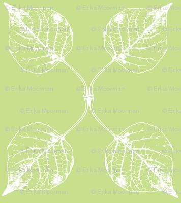 Falling leaves kiwi
