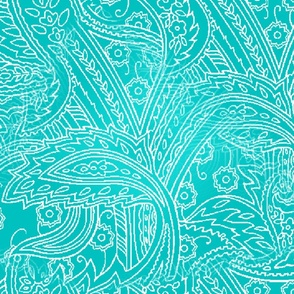 paisley_on_turquoise