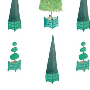 arbres_de_versailles_