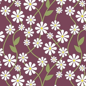 White Daisies on Red