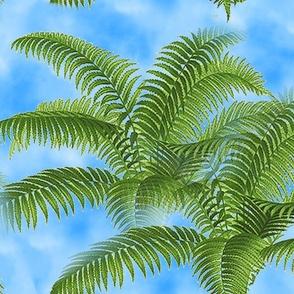 leaf_fronds_sky