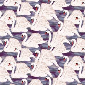 swans in violet
