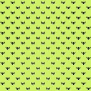 Green Butterflies on Lime Green