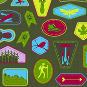 Julie's Hiking Badges HALF size