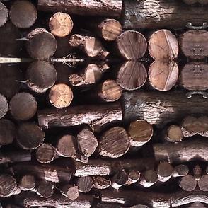 woodpile 2014