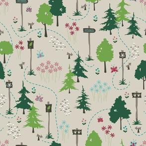 Woodland Trails (Summer)
