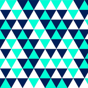 Triangles Navy Mint White