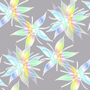 Pastel Plasma Autumn Joy Blossoms on Gray