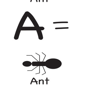 a_ant