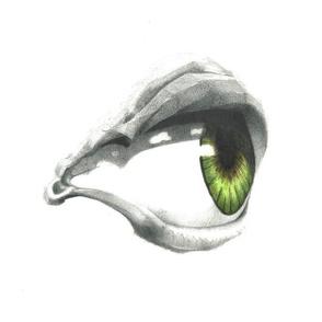 Hearteye