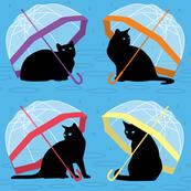 raining cats 'n cats