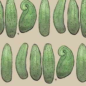 Cucumbers on brown