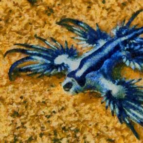 bluefish_adt2014_bhhd7000a
