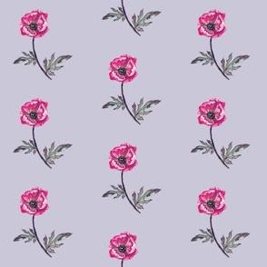 Poppy Magenta on Lavender Mist