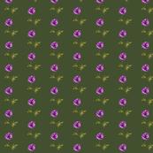 Poppy Purple on Olive Green