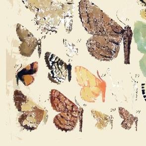 Retro Butterflies Poster in Gouache