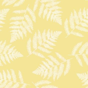 white ferns on sunshine yellow