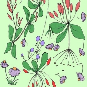 Autumn hips and wild flowers