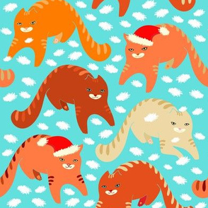 Gatito, orange cats on blue-turquoise  background